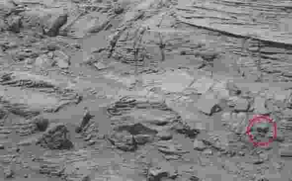 """Entusiastas que procuram provar a existência de vida extraterrestre analisaram uma imagem de Marte, divulgada pela Nasa (Agência Espacial Norte-Americana), e encontraram uma silhueta que lembra uma espécie de urso polar. A teoria foi divulgada ontem (26) no site """"UFO Sightings Daily"""" - Nasa/Ufo Sightings Daily"""