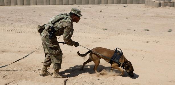 Soldado americano treina cão farejador em base militar de Qayyara, em Mosul - SUHAIB SALEM/REUTERS