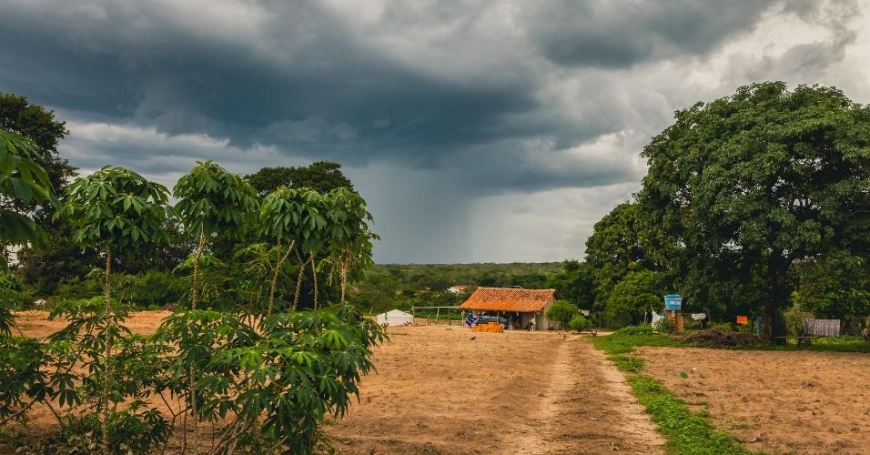 A devastação do cerrado se agravou nos últimos 12 anos com a construção de grandes represas e de megaprojetos de irrigação para o agronegócio