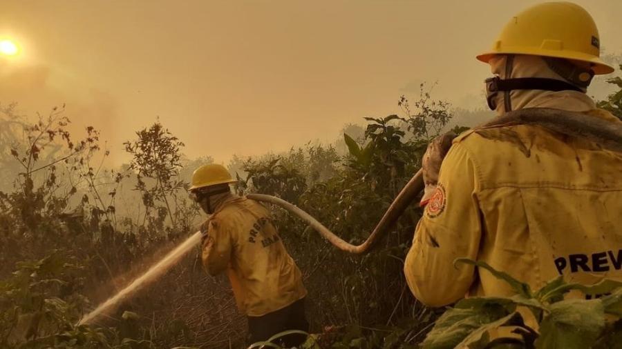 Entre aqueles que estão na linha de frente contra as chamas, dezenas vivem de contratos temporários com o Ibama - Prevfogo