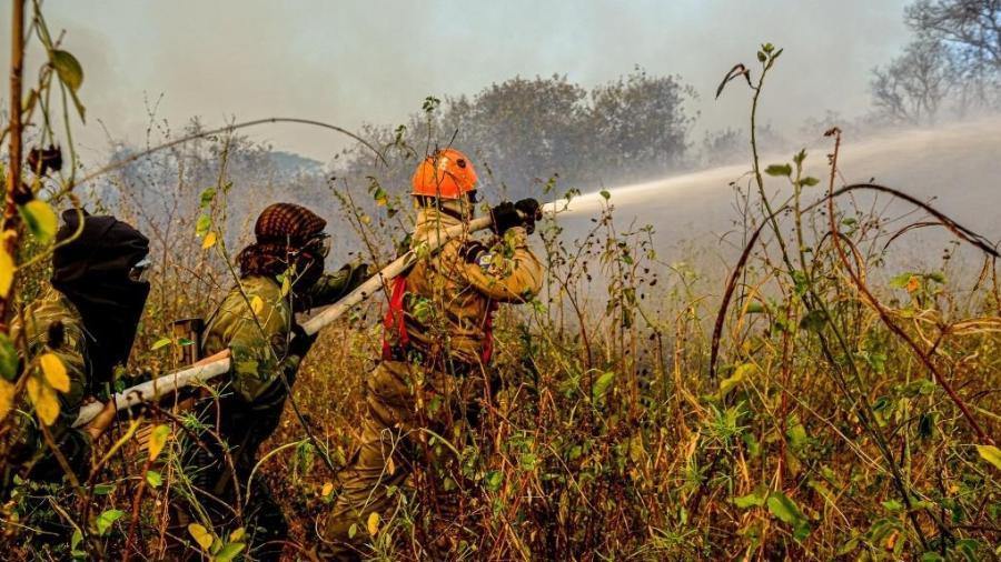Desde 5 de agosto, o Ministério da Defesa estendeu a Operação Pantanal que se dedicava ao combate aos incêndios no Mato Grosso do Sul para o Mato Grosso - Mayke Toscano/Secom-MT