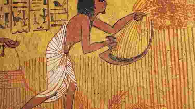 Pintura de um agricultor na tumba de Sennedjem, um artesão que viveu no antigo Egito - Getty Images - Getty Images