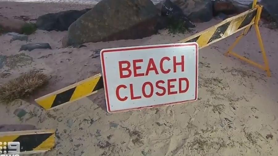 Homem de 50 anos morreu em ataque de tubarão em Tuncurry Beach, na Austrália  - Reprodução/9News Sydney