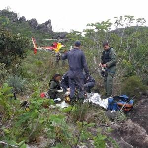 Bombeiros de Minas Gerais atendem vítima de ataque de tamanduá