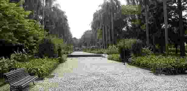 Jardim Botânico de São Paulo/Divulgação
