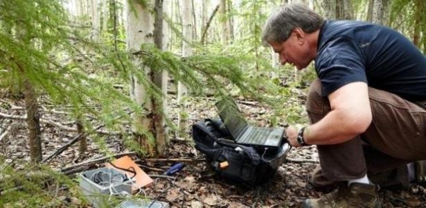 Vladimir Romanovsky coleta registros de temperatura abaixo do solo da floresta - Anthony Rhoades