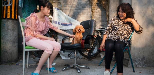 Duas mulheres com um poodle aproveitam o clima ameno em uma tarde em Pequim