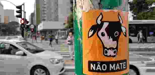 Foto tirada com câmera traseira do LG K10 Novo (vaca) - Márcio Padrão/UOL - Márcio Padrão/UOL