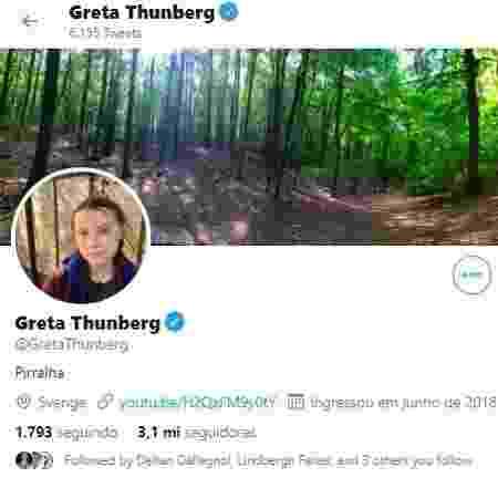 """Greta Thunberg colocou o termo """"pirralha"""" no perfil do Twitter - Reprodução - Reprodução"""