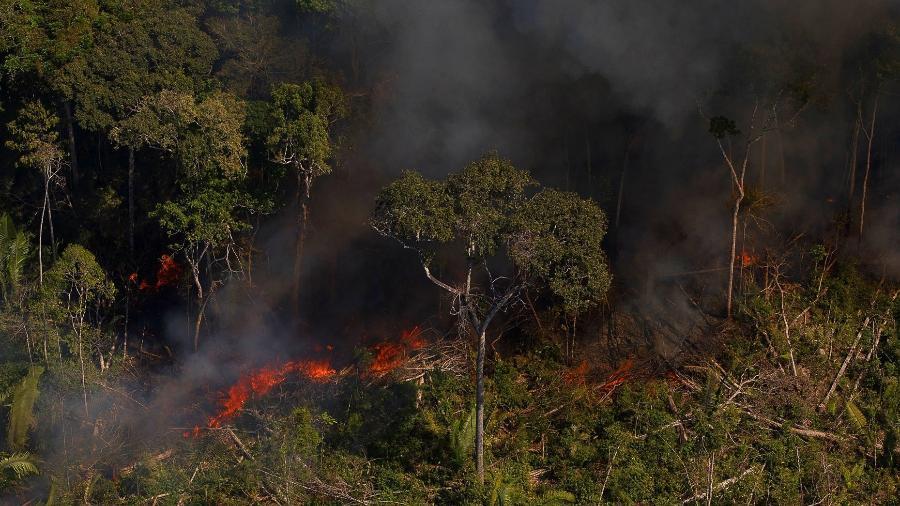 7.ago.2020 - Queimadas em Rondônia, próxima à Flona do Jacundá - Bruno Kelly/Amazônia Real