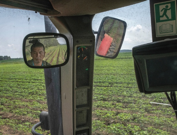 Fu Wanjiang, um agricultor que trabalha para uma cooperativa, trabalha em um campo de soja em Xiaowusili, na China