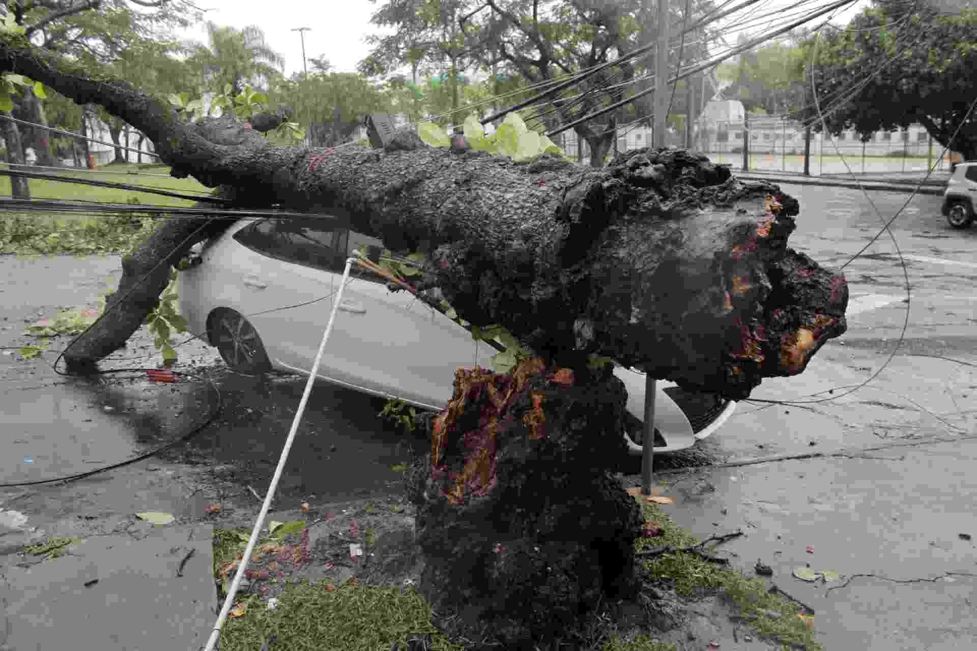 Árvore cai sobre carro no bairro de Sulacap, na Zona Oeste do Rio de Janeiro, após forte temporal - LUIZ GOMES/ESTADÃO CONTEÚDO