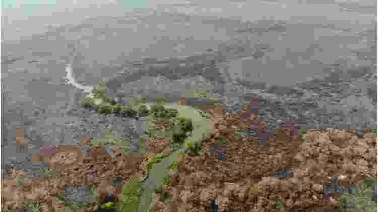 foto pantanal - GUSTAVO FIGUEIRÔA/SOS PANTANAL via BBC - GUSTAVO FIGUEIRÔA/SOS PANTANAL via BBC