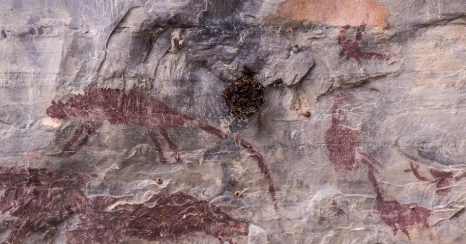 3.abr.2017 - Pintura rupestre no Parque Estadual Cerca Grande em Matozinhos (MG)