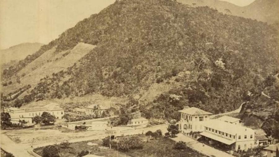 As árvores da mata da Tijuca eram cortadas e usadas para a produção de carvão. Depois davam lugar às plantações. Também havia pastos e plantações de legumes e frutas. - BN Digital/BBC