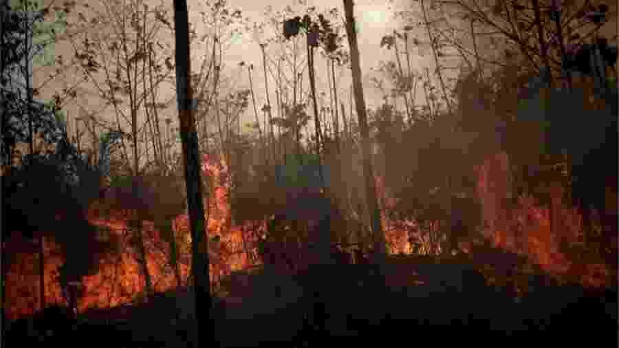 """Três cidades do Pará registraram aumento de queimada no chamado """"Dia do Fogo"""": Novo Progresso, Altamira e São Félix do Xingu - Reuters"""