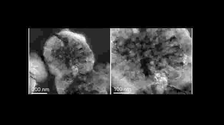 Depósitos biominerais - Reprodução - Reprodução