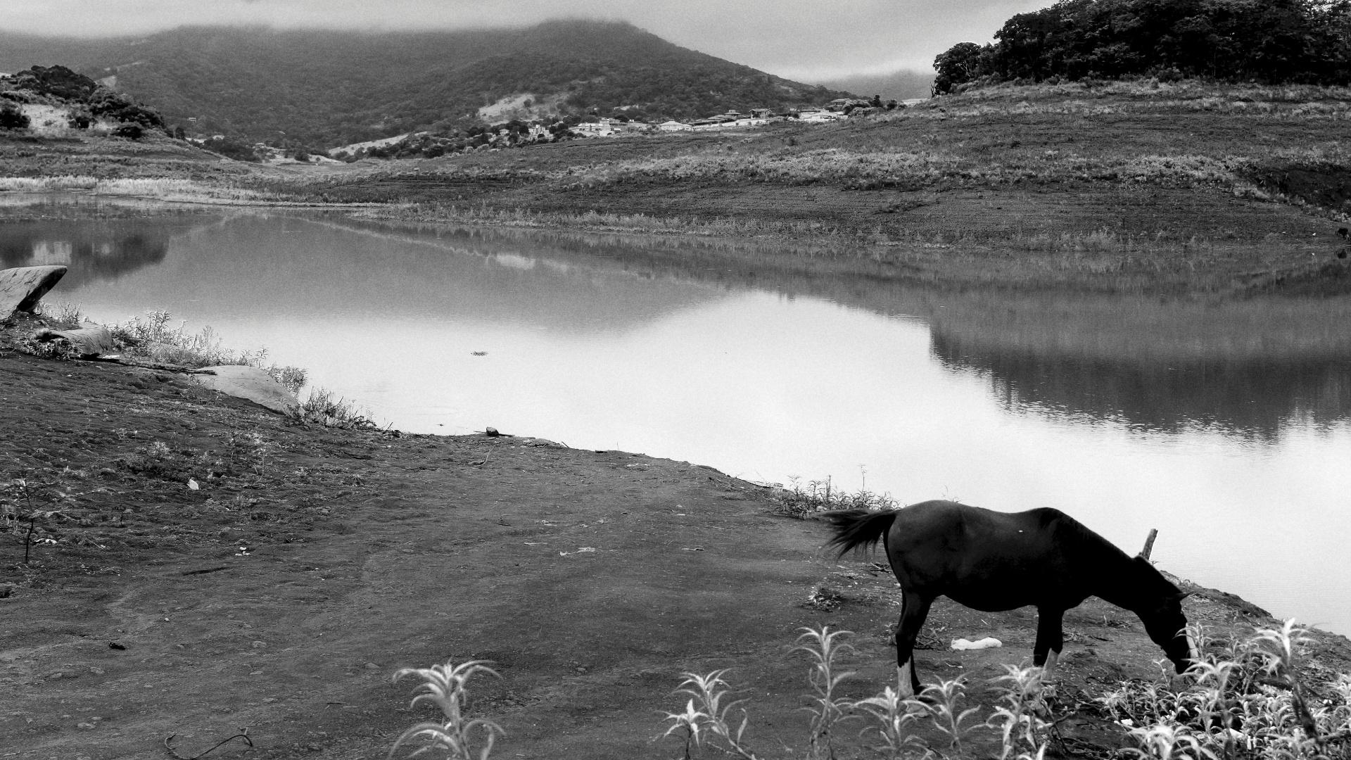 4.ago.2015 - JACAREÍ - Na represa de Jacareí, que ajuda a compor o sistema Cantareira, 76,5% dos rios que compõem o manancial estão sem suas matas ciliares