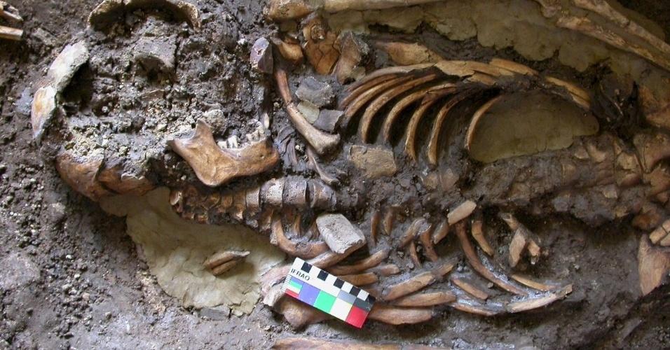 17.nov.2015 - Um esqueleto que data de quase 10 mil anos foi encontrado no abrigo Kotias Klde, no oeste da Geórgia. O DNA extraído do crânio e de um dente molar da ossada está ajudando a desvendar a ascendência multifacetada dos europeus modernos. Segundo cientistas da Universidade de Cambrigde, no Reino Unido, que sequenciaram o genoma, essa linhagem teria surgido da mistura das populações de caçadores-coletores, que resistiram à era glacial, com outras populações ancestrais
