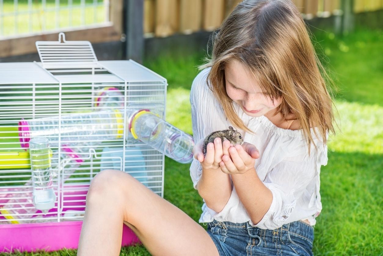 Criança; animais; pet; hamster