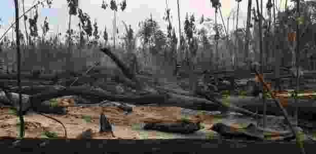 """Agentes do Ibama checam tora de madeira, durante apreensão realizada pela """"Operação Onda Verde"""", em Apuí (AM) - Bruno Kelly/Reuters"""