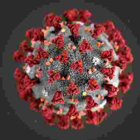 Coronavírus - Divulgação/CDC - Divulgação/CDC