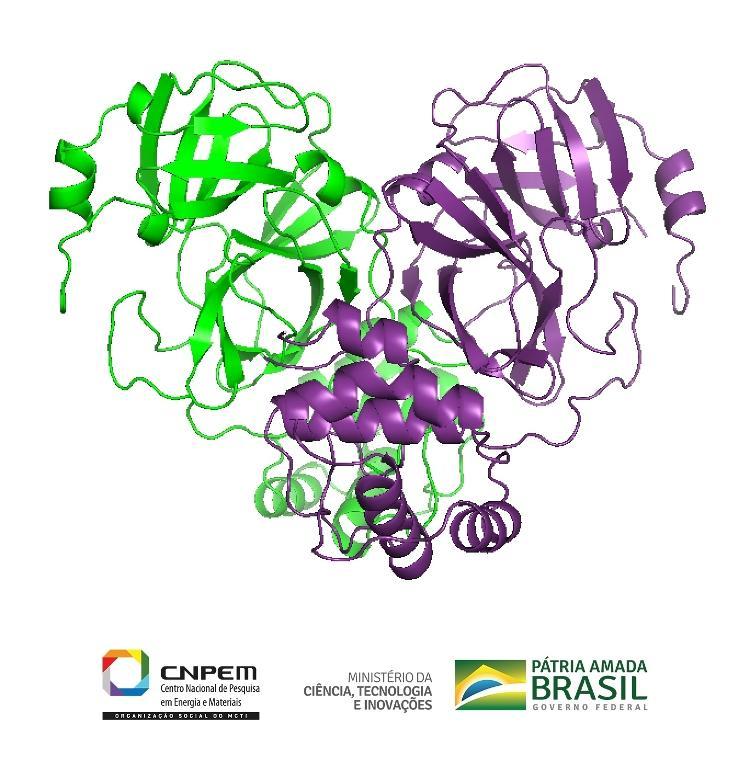 Proteína importando para ciclo de vida do coronavírus foi analisada pelo Sirius - Divulgação - Divulgação