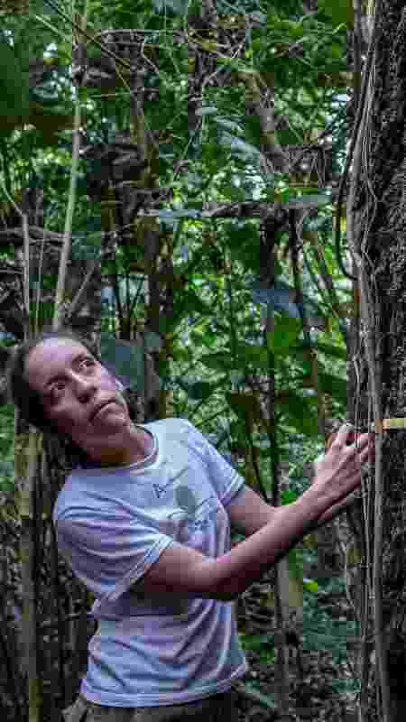 Bióloga estuda os impactos do fogo na Floresta Amazônica - Marizilda Cruppe/Rede Amazônica Sustentável - Marizilda Cruppe/Rede Amazônica Sustentável