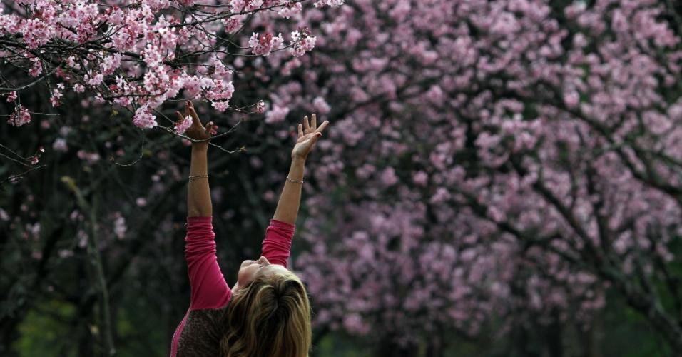 4.ago.2016 - Pessoas caminham no bosque das cerejeiras no Parque do Carmo, na zona leste da capital paulista. Nos dias 5, 6 e 7 de agosto o local promove a Festa das Cerejeiras com apresentações de música e dança da cultura japonesa