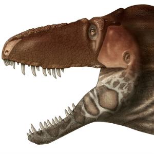 Estudo da Nature revela uma nova face, com órgãos sensoriais, dos tiranossauros