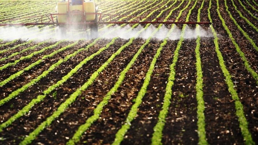 Ministério da Agricultura dá licença a agrotóxicos não analisados em 60 dias - Por Lisandra Paraguassu