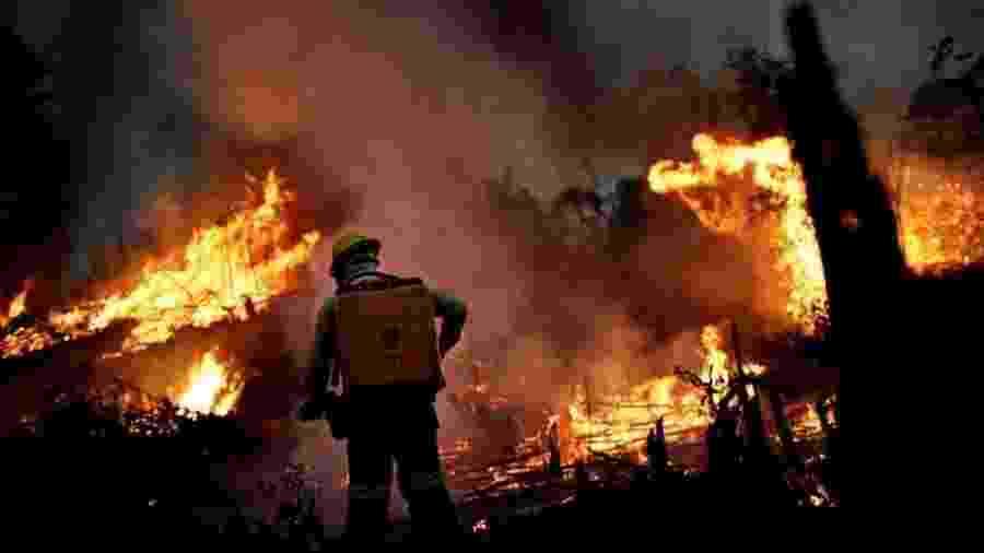 Fogo e desmatamento na Amazônia causam preocupação em todo o mundo - Reuters