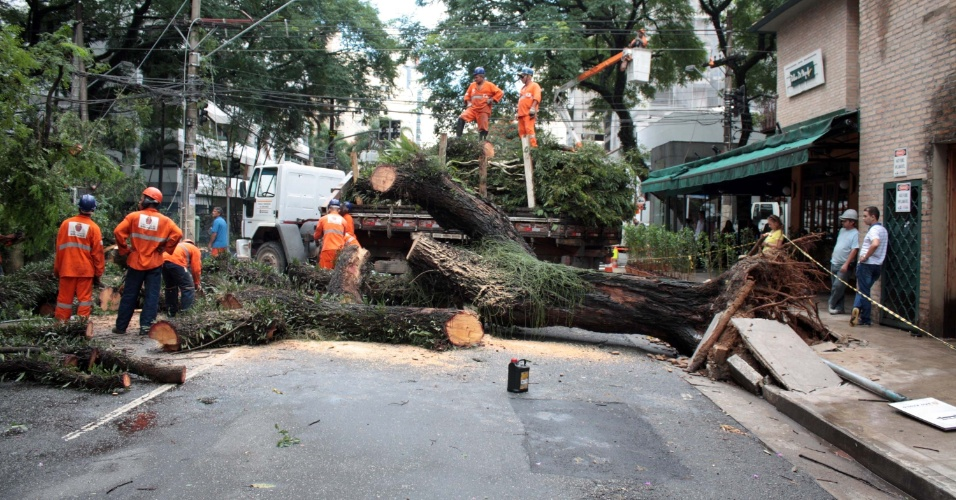 11.mar.2016 - Árvore de grande porte cai na avenida Rouxinol, em São Paulo, no bairro de Moema. Funcionário trabalham no local para liberar a via