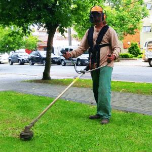 Franquia Aquarela Jardim. Rede especializada no serviço de jardinagem - Divulgação