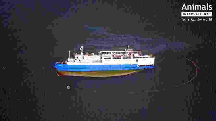 O navio Queen Hind, que virou na costa da Romênia - Reprodução/Facebook