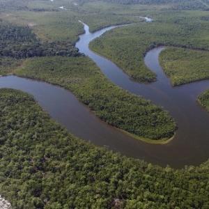 Reserva Nacional do Cobre e Associados, na Amazônia