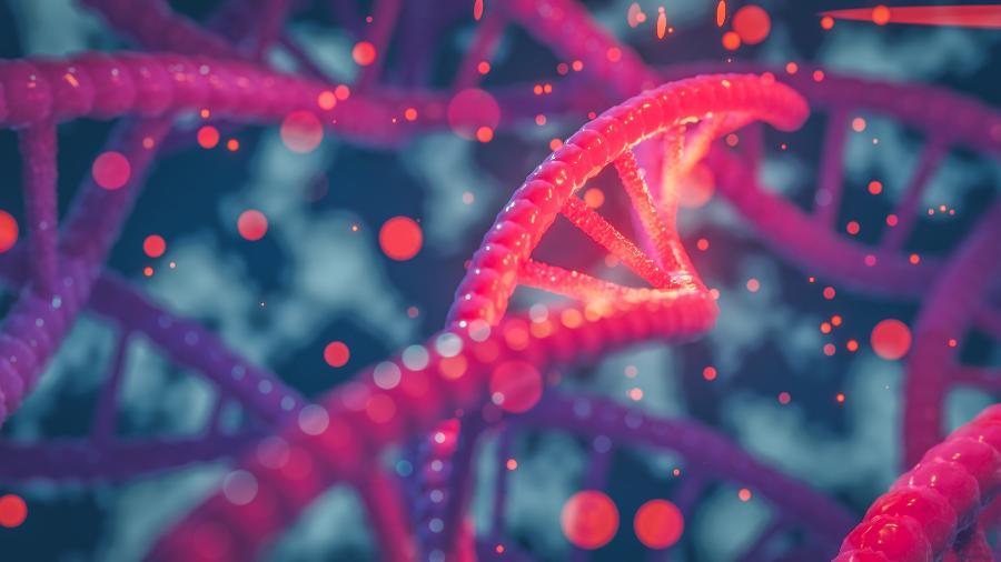 Marcadores do sistema imunológico variam pelo mundo e oferecem desafios diante da miscigenação - Getty Images/iStockphoto