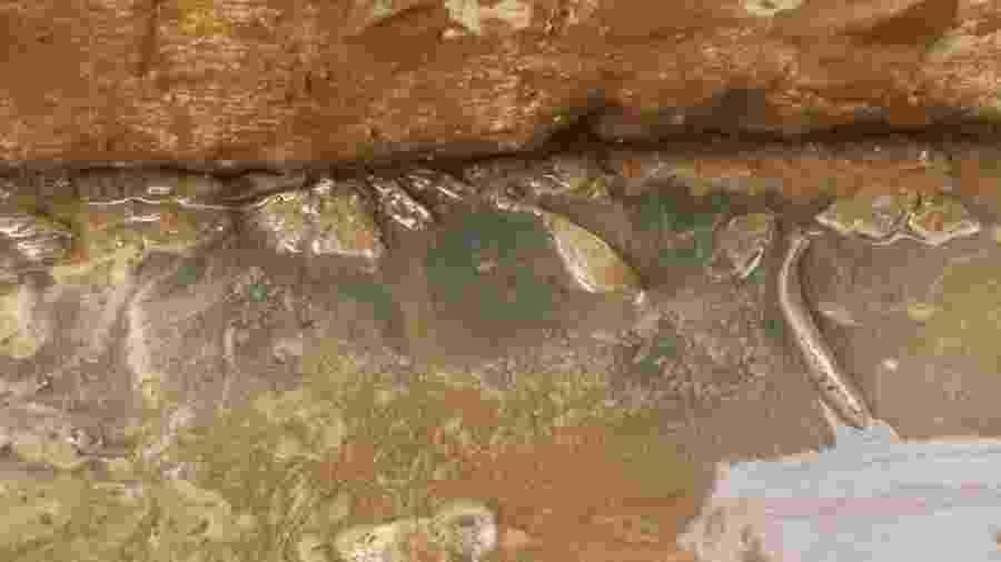 Pó brilhante contém óxido de ferro e apareceu nas calçadas de muitos moradores de Governador Valadares em janeiro, após cheia do Rio Doce - BBC
