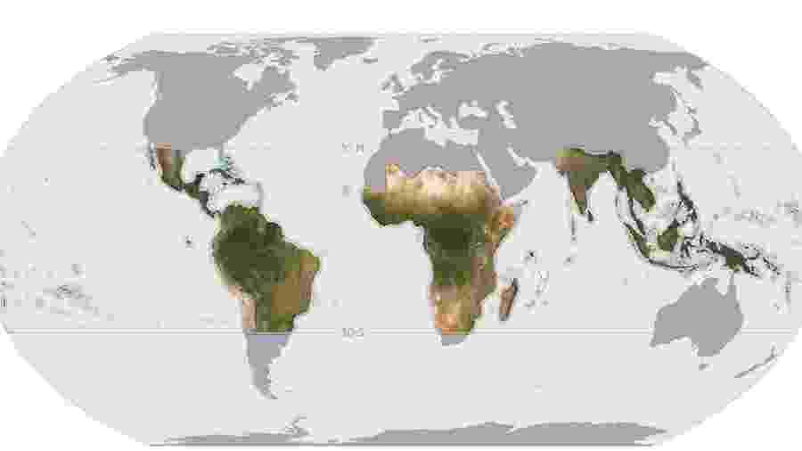 O mapa, com imagens de alta resolução, cobre 64 países, inclusive o Brasil, e será atualizado mensalmente - Planet Labs Inc