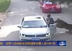 Reprodução/CCTV