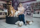Conheça sex shop que abriga animais - Felipe Gabriel/UOL