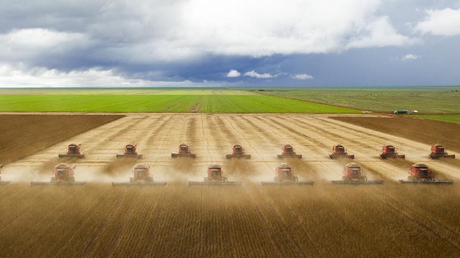 Plantio de soja de MT dispara em novembro, aponta Imea - Marcelo Justo/Folhapress