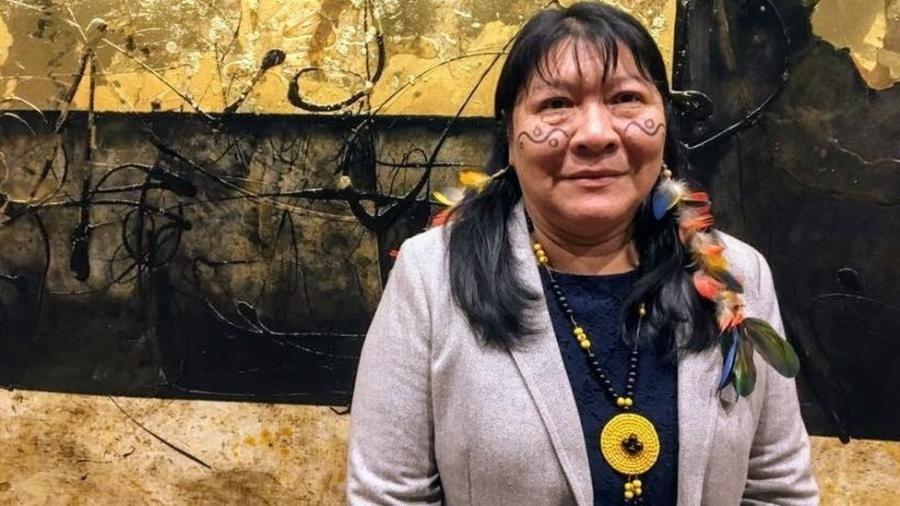 Joênia Wapichana, eleita deputada federal, foi a primeira indígena a se formar em Direito no Brasil - BBC