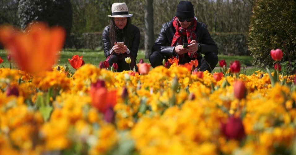 A couple check their phones as they sit amongst flowers on a sunny day in Regent's Park in London, Britain April 17, 2016. REUTERS/Neil Hall ORG XMIT: NGH08