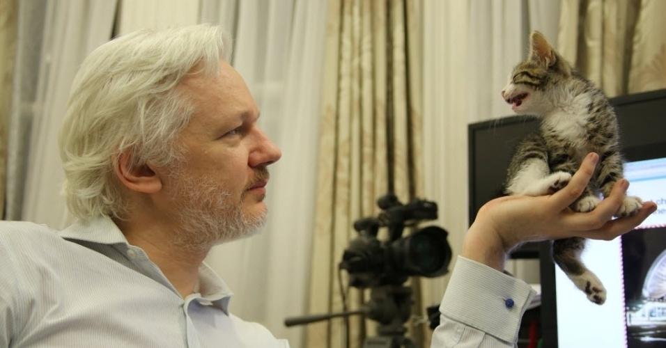 9.mai.2016 - Fundador do WikiLeaks, Julian Assange, segura seu novo gatinho na Embaixada do Equador no centro de Londres, Reino Unido. O gatinho é um presente de crianças para fazer companhia a ele. Assange enfureceu os Estados Unidos ao publicar centenas de milhares de correspondências diplomáticas norte-americanas secretas e está abrigado na embaixada equatoriana desde junho de 2012 para evitar uma investigação de estupro na Suécia
