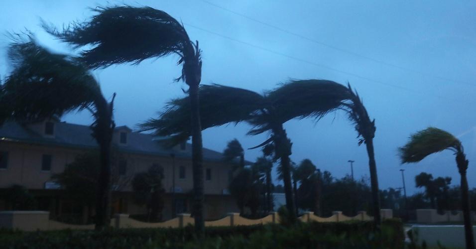 7.out.2016 - Árvores balançam com os ventos trazidos pelo furacão Matthew, que se aproxima da costa da Flórida, em Cocoa Beach