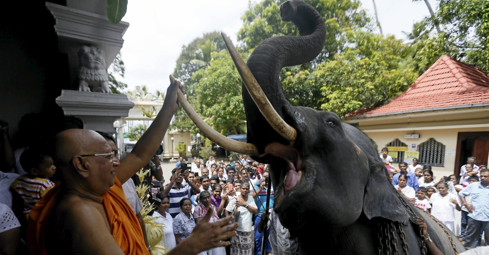 16.abr.2016 - Monge budista abençoa elefante em frente a tempo de Boralasgamuwa, no Sri Lanka, como parte das celebrações de Ano Novo nesse país asiático, ocorrido no dia 14 de abril