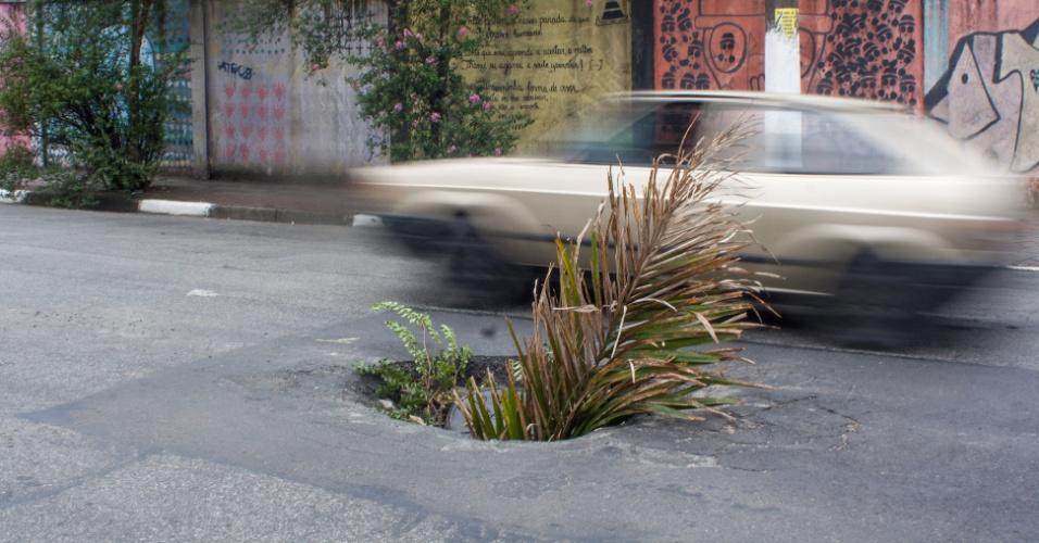 21.fev.2016 - Um buraco se formou no asfalto da rua Borba Gato, zona sul da cidade São Paulo. A abertura está sinalizada com uma planta, colocando em risco motoristas que circulam pelo local. A via é o principal caminho para acessar um shopping e um cemitério localizados na região