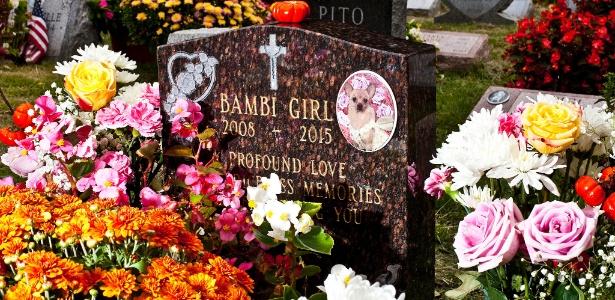 Lápide no cemitério de animais Hartsdale, em Nova York