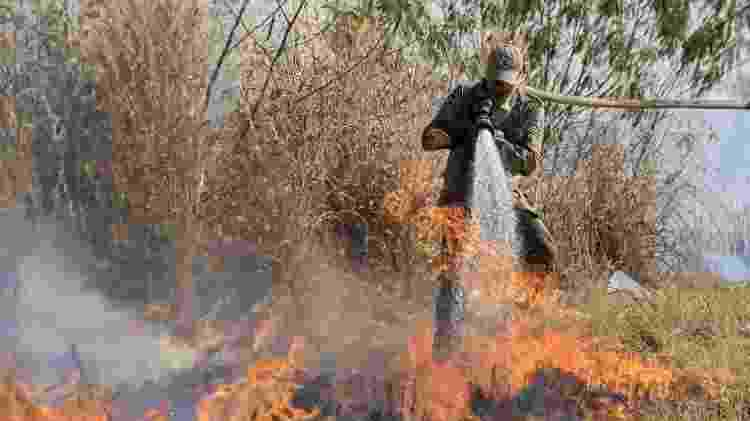 Pantanal vive sua pior crise na última década - EPA - EPA